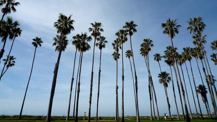 Self balancing board location in Santa Barbara, California