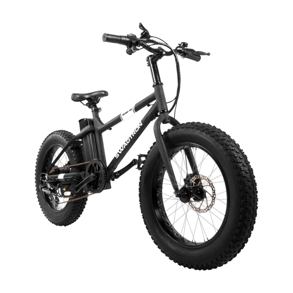 EB6 Fat Tire Electric Bike