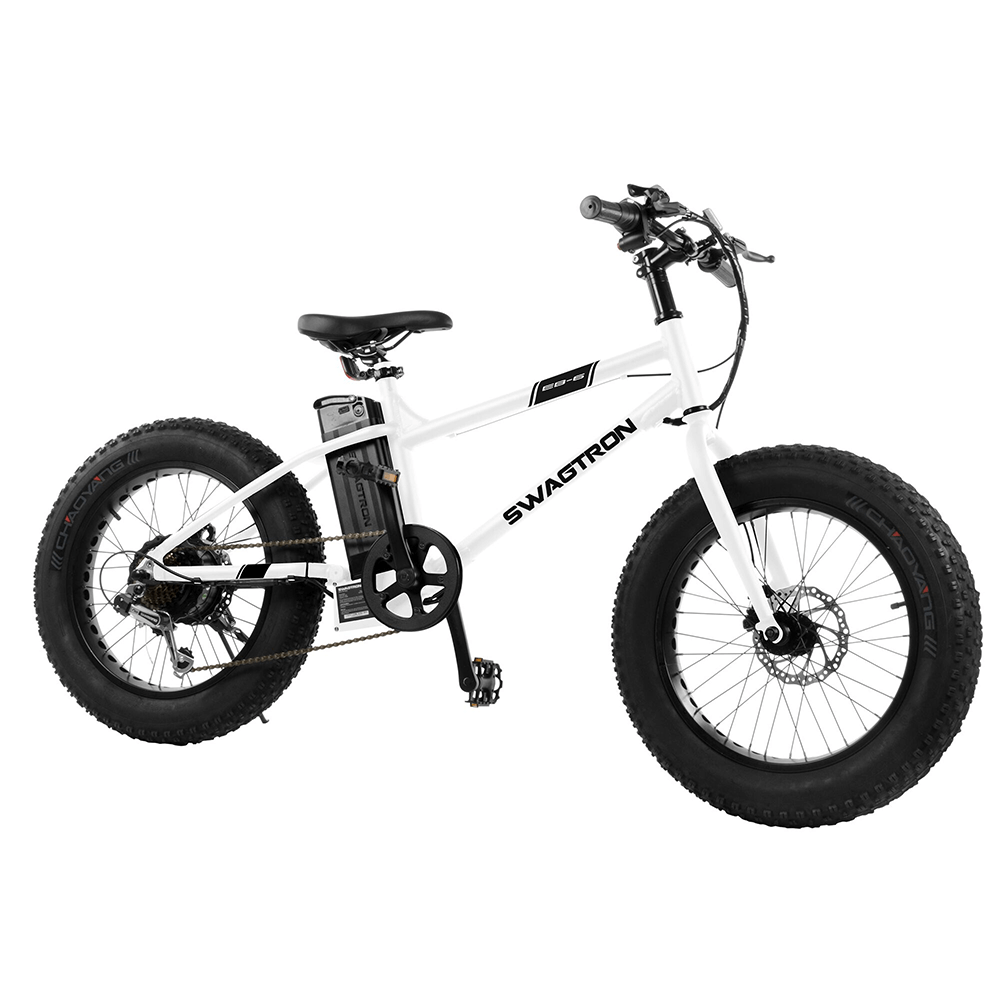 electric bike for teenager