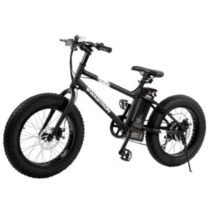 kids electric fat bike