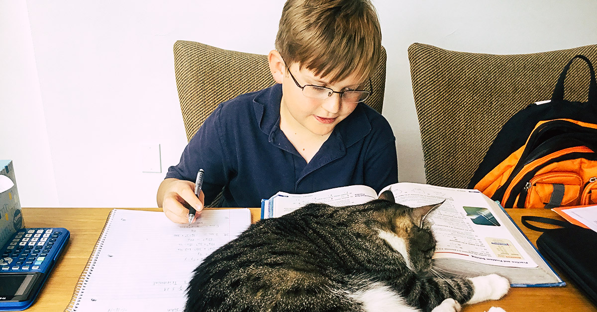 Young boy sitting at a table doing homework next to cat