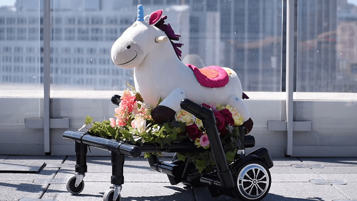 Hoverboard unicorn – just for funsies!
